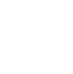 VP Performance, reprogrammation moteur en France